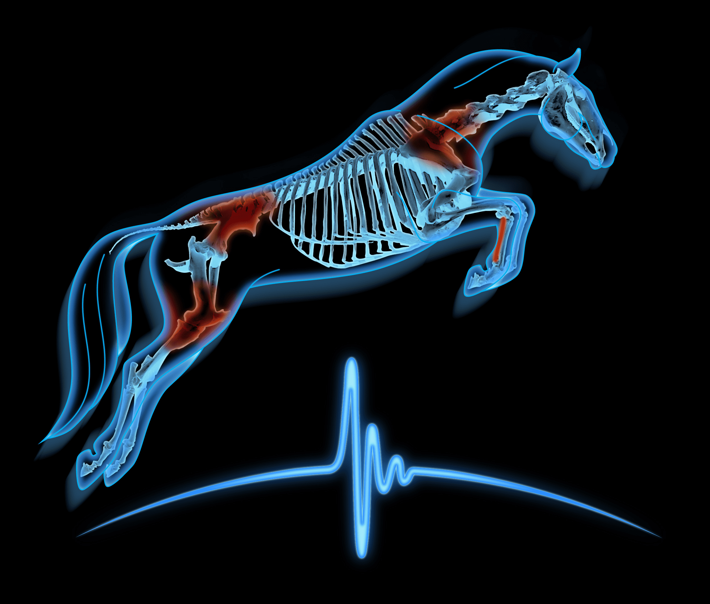 Equine Sports Medicine of Maryland Logo
